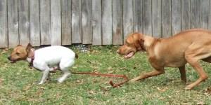Tess making a move!