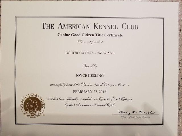 CGC Certificate Boudicca February 27th 2016